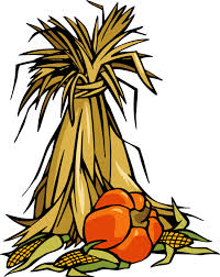 corn-stalk-2